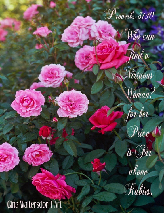 Who Can Find a Virtuous Woman Proverbs 31 10 Typography Inspirational Red Pink Rose Bush Garden  Verses Gina Waltersdorff Fine Art Original