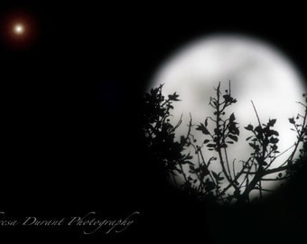 Holding the Moon- black and white photography- wall art- artistic view- romantic full moon-