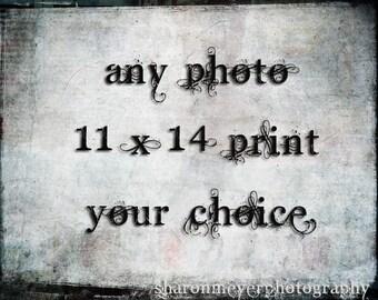11x14 Fine Art Photo Print, Your choice of prints from my shop, Wall decor, 11x14 Photo Print, FIne Art Photo