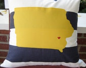 Novelty state pillow