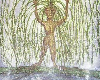 Willow Woman Spirit Cards