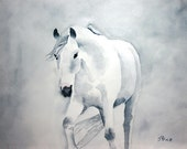 Out of the Mist Horse Watercolor Print
