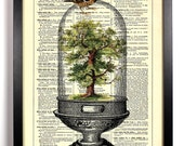 Tree Terrarium, Home, Kitchen, Nursery, Bathroom, Office Decor, Wedding Gift, Eco Friendly Book Art, Vintage Dictionary Print, 8 x 10 in.