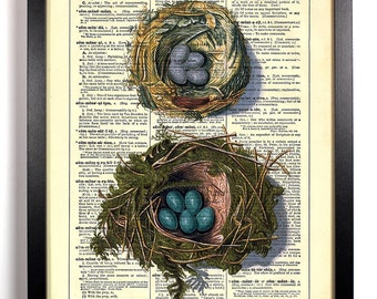 Tiny Birds nests Bird Eggs, Home, Kitchen, Nursery, Office Decor, Wedding Gift, Eco Friendly Book Art, Vintage Dictionary Print 8 x 10 in.