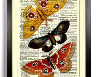 Three Butterflies, Home, Kitchen, Nursery, Bathroom, Office Decor, Wedding Gift, Eco Friendly Book Art, Vintage Dictionary Print, 8 x 10 in.