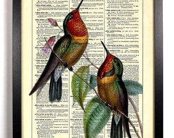 Two Hummingbirds, Home, Kitchen, Nursery, Bath, Office Decor, Wedding Gift, Eco Friendly Book Art, Vintage Dictionary Print 8 x 10 in.