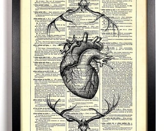 Anatomical Heart Deer Skeleton, Home, Kitchen, Dorm, Office Decor, Wedding Gift, Eco Friendly Book Art, Vintage Dictionary Print, 8 x 10 in.
