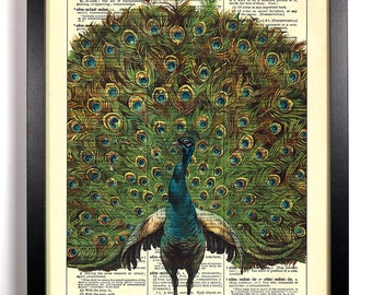 Peacock Head Shot, Home, Kitchen, Nursery, Bathroom, Office Decor, Wedding Gift, Eco Friendly Book Art, Vintage Dictionary Print, 8 x 10 in.