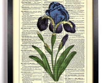 Gorgeous Iris, Home, Kitchen, Nursery, Bath, Office Decor, Wedding Gift, Eco Friendly Book Art, Vintage Dictionary Print 8 x 10 in.