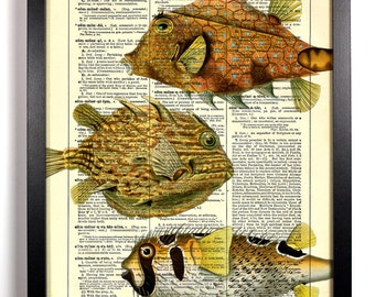 Blowfish Collection, Home, Kitchen, Nursery, Bath, Office Decor, Wedding Gift, Eco Friendly Book Art, Vintage Dictionary Print 8 x 10 in.