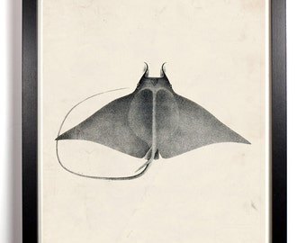 The Beautiful Manta Ray, Home, Kitchen, Nursery, Bath, Dorm, Office Decor, Wedding Gift, Housewarming Gift, Unique Holiday Gift, Wall Poster