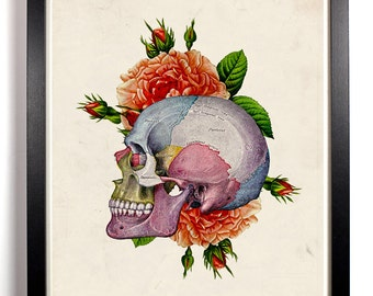 Human Skull With Flowers, Home, Kitchen, Nursery, Dorm, Office Decor, Wedding Gift, Housewarming Gift, Unique Holiday Gift, Wall Poster