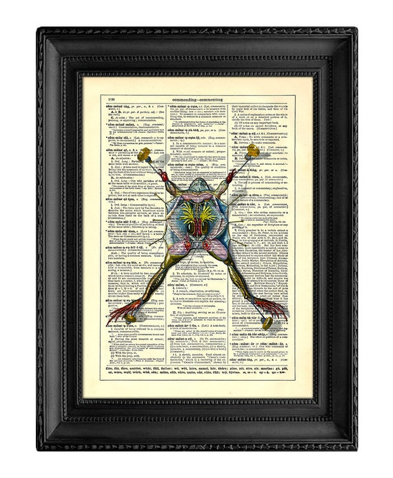 Anatomy of A Frog, Home, Kitchen, Nursery, Bathroom, Office Decor, Wedding Gift, Eco Friendly Book Art, Vintage Dictionary Print, 8 x 10 in.