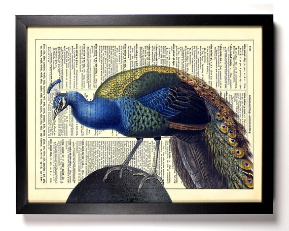 Handsome Peacock, Home, Kitchen, Nursery, Bathroom, Office Decor, Wedding Gift, Eco Friendly Book Art, Vintage Dictionary Print, 8 x 10 in.
