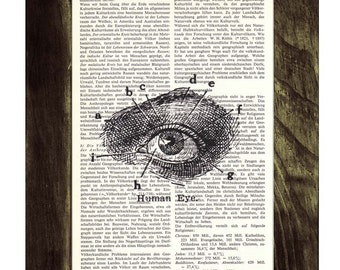 Upcycled Dictionary Page Upcycled Book Art Upcycled Art Print Upcycled Book Print Vintage Art Print Eye Anatomy sudy BPSK038