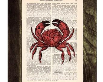 Summer Sale Book print Crab Print on Vintage Dictionary Book SEA021