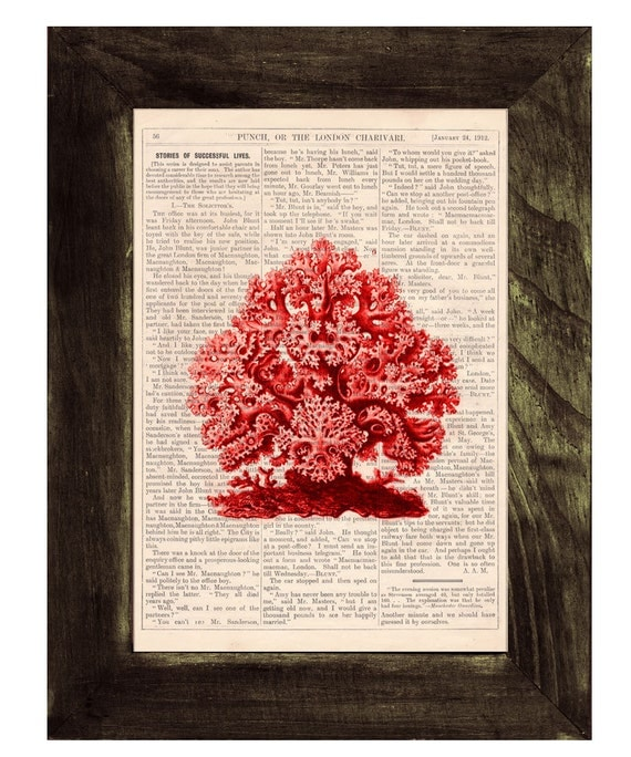 Summer Sale Coral Vintage Book Print Dictionary or Encyclopedia Page Book print Gorgeous Red Coral Print on Vintage Bookart art SEA077