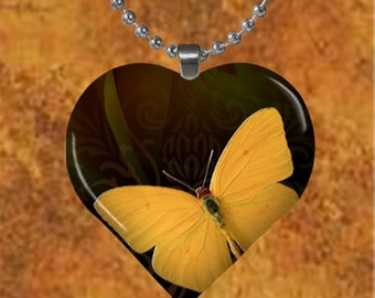 Golden butterfly Heart Pendant with chain(Bu1.6)