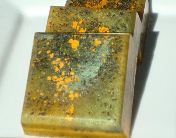 Halloween Soap - Monster Skin Soap - Science Fiction Horror Soap - Green Poppy Seed Soap, Unisex Soap, Homemade Soap, Bar Soap - 1/4 lb Soap