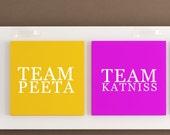 Hunger Games Decal - Team Katniss