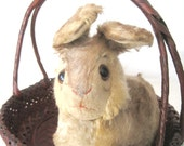 Vintage Steiff Pummy crouching Rabbit with Button in Ear - SugarLMtnAntqs