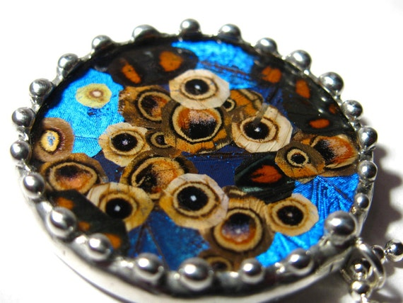 Real Moth Butterfly Eye Collage Pendant