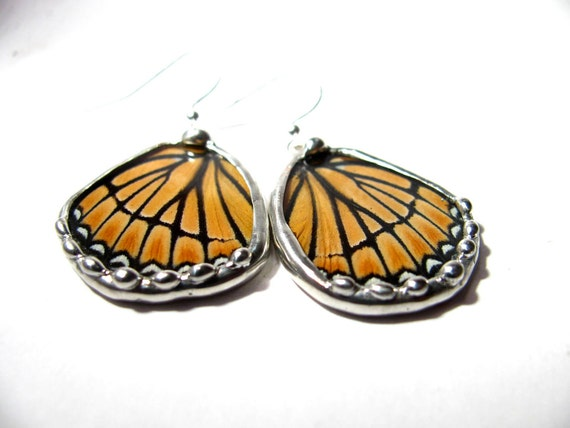 Real Recycled Viceroy Butterfly Earrings