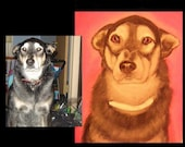 Realistic CUSTOM pet portrait paintings