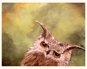 Curious Owl Art Print....8 x 10....Fun bird wall art