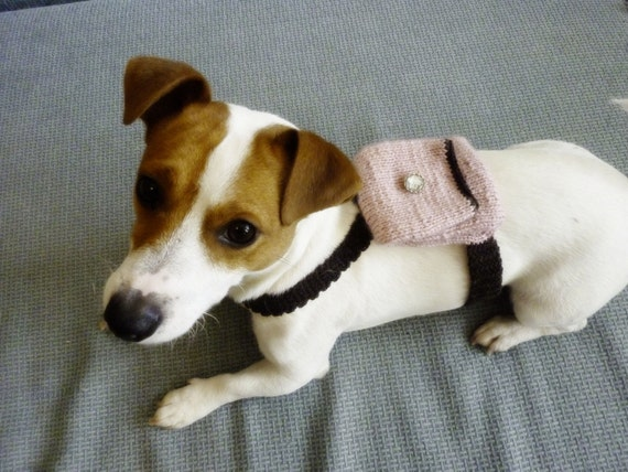 Knitting Patterns Dog Accessories : Knit and Crochet Dog Backpack Dog Accessories Dog Clothes