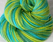 Beach Glass- Handspun Hand painted Soft Merino Wool Yarn