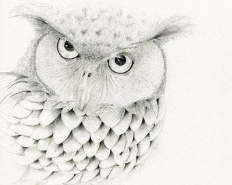 He's Mr. Owl Reserved for Lori a fine art print of my Original Drawing
