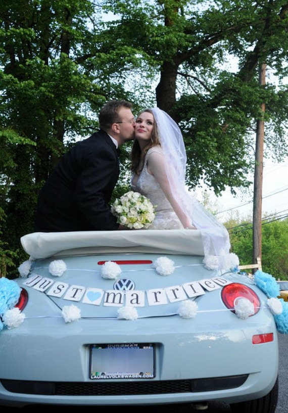JUST MARRIED car sign, wedding banner, photo prop, CUSTOM colors