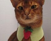Felt Strawberry tie with point collar
