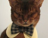 School uniform collar and bow tie set for cat