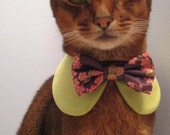 Sweet Round Collar in choice of color or print & interchangeable bow tie
