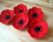 Five red poppies it (is reserved)