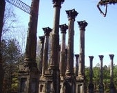 Antebellum Dreams, Photograph,  5x7 Windsor Plantation Ruins Photo