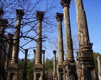 Ghost Columns Photograph, Windsor Plantation Ruins Photo