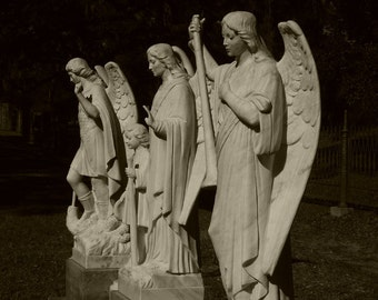 Angel Trio Sepia Photograph, 5x7 photo, matted