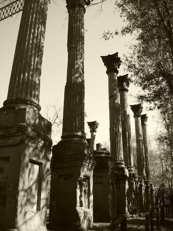 Ghost Pillars - Photograph 5x7 Plantation Ruins