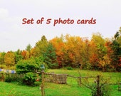 Photo Greeting Cards with Envelopes, Set of 5, Signed