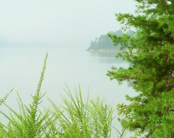 Hillside Path, Cave Run Lake, Kentucky--8 x 10 fine art photo, signed