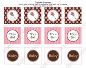DIY  Baby Girl Shower  Printable Party Circles 2in cupcake toppers pink brown