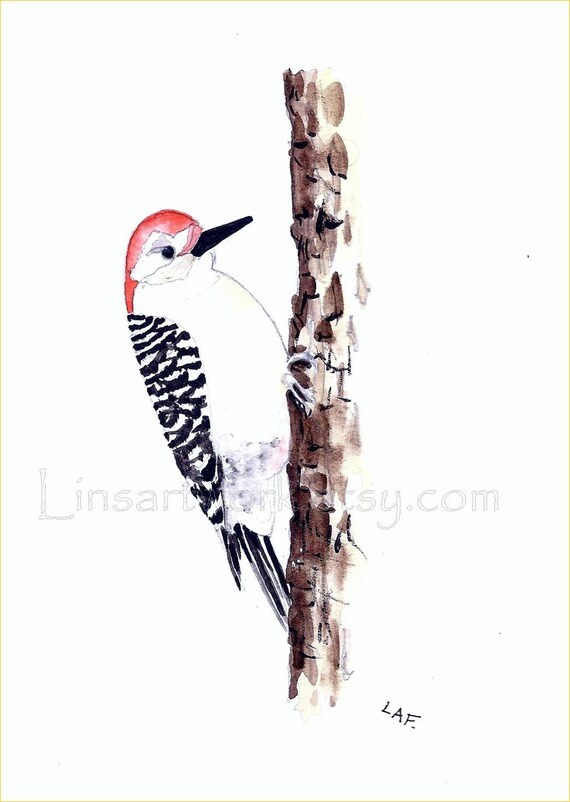 """Woodpecker matted Watercolor Art. choose from Original watercolor or Limited Edition Print Red headed Woodpecker. 5x7"""""""