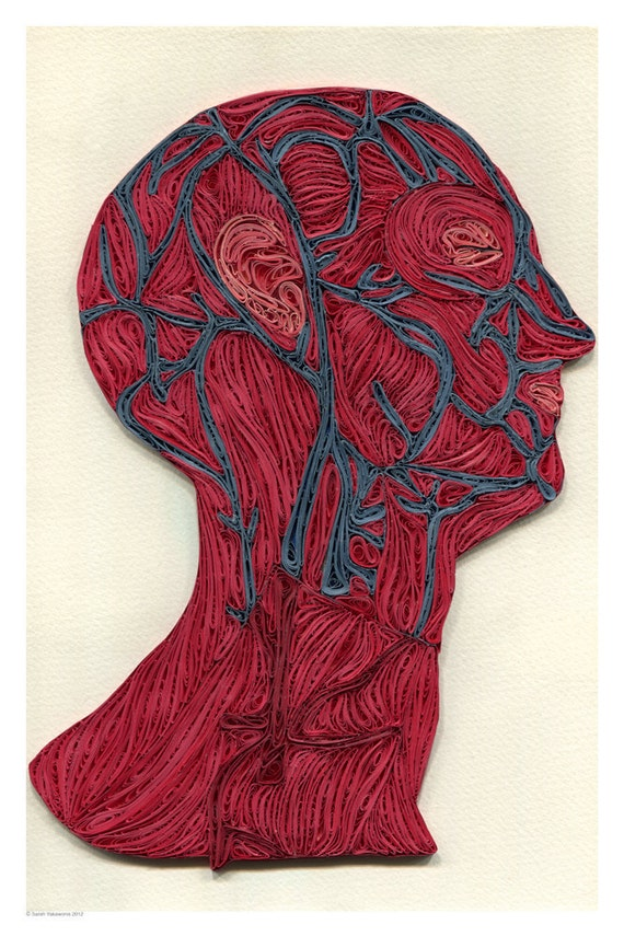 veins of the head poster, Doctor Decor Print, Minimalist goth poster, Color anatomic illustration, Paper art print, quilled poster, 12x18 in
