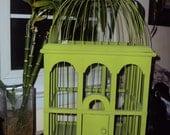 Green Vintage Birdcage