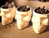 Magic Healer Crystal Skull