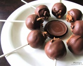 Cake Pops Reese's PEANUT BUTTER, Chocolate, Food, On a stick, Wedding Favor, Edibles,  1 Dozen (12) by Ploctopia