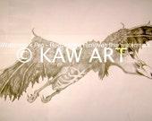PDF of an Original Pencil Drawing 'Dragon Bird' by KAW Gothic Fantasy Bird Animal Creature